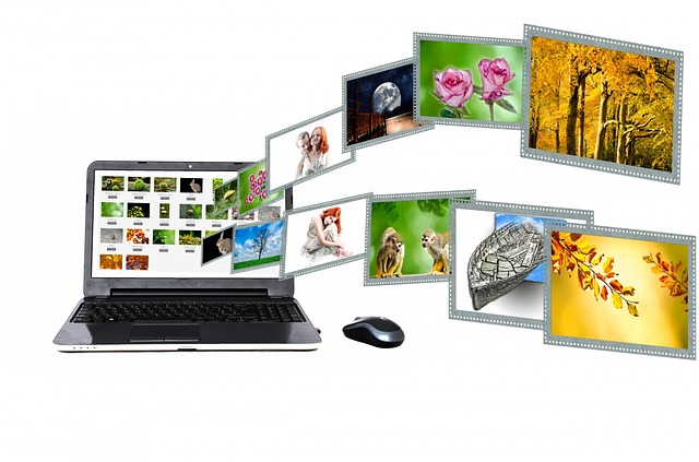 Internet, Content, Portal, Search - Free image - 315132